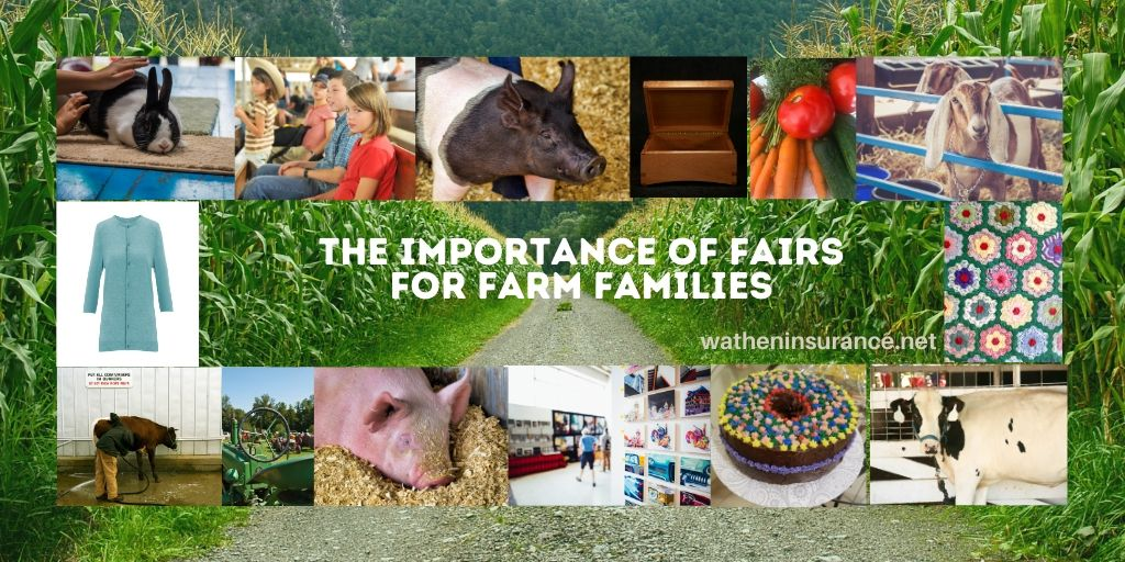 The Importance of Fairs for Farm Families